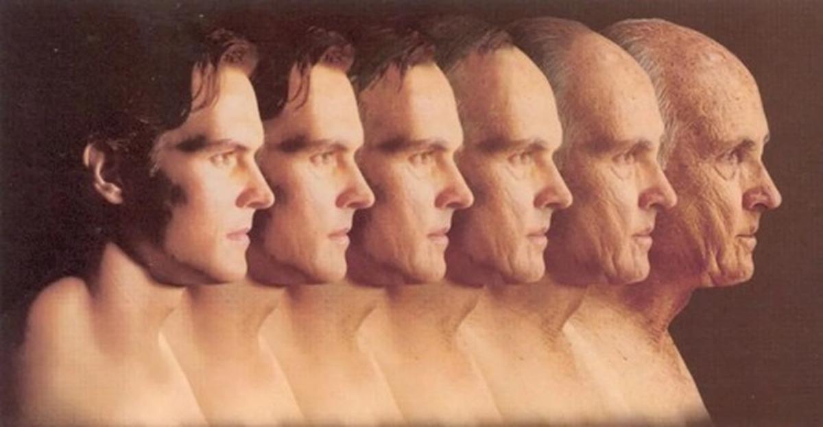 теории старения