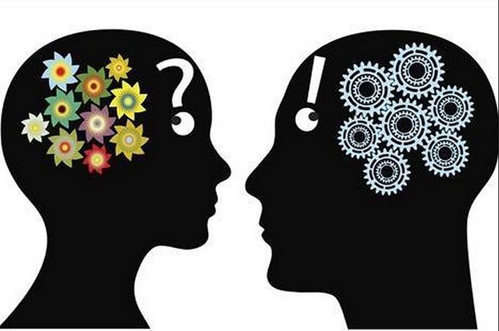 Отличия женского мозга от мужского
